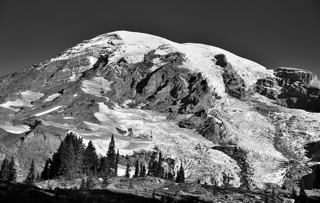 Mount Rainier Coming Up Over the Rise (Black & White, Mount Rainier National Park)