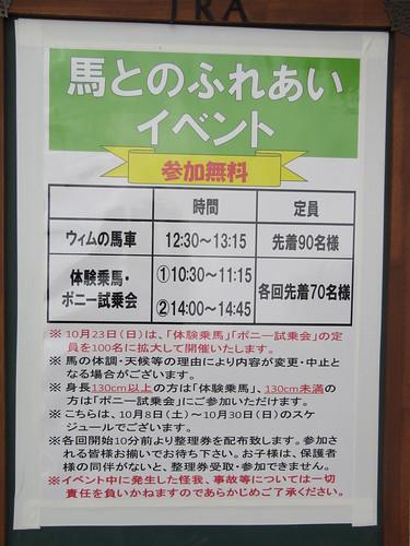 京都競馬場