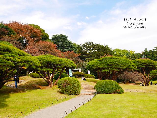 日本東京自由行新宿御苑庭園景點 (33)
