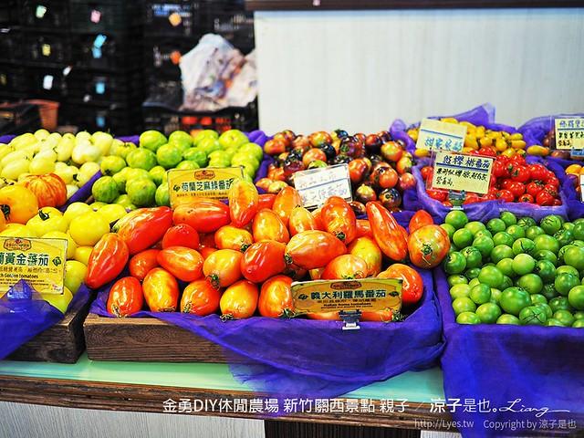 金勇DIY休閒農場 新竹關西景點 親子 31