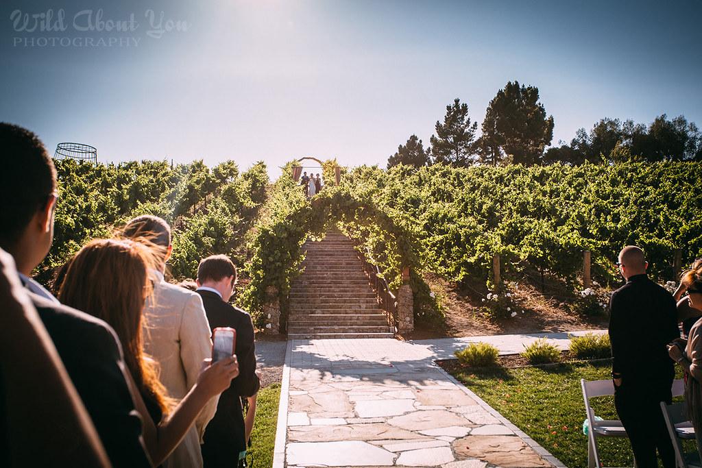 nella-terra-wedding056