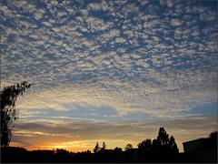 Sunrise 9/11/2015