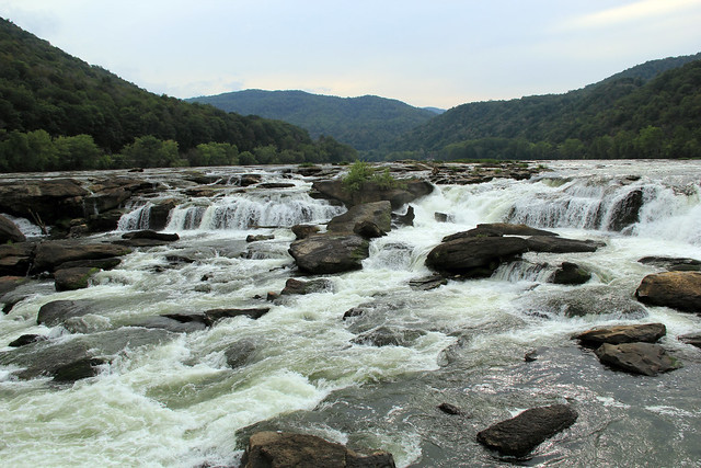 20150829_New_River_Gorge_053