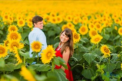 I don't always shoot in an epic sunflower field at sunrise, but when I do, I make sure I photograph a relationship as authentic and awesome as Sara and Adam's!  #labrisaphotography #attractionsession #grinterfarms #lawrence #holysunflowers