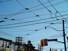 Overhead TTC streetcar wires