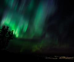 Aurora polaris (Trondheim)