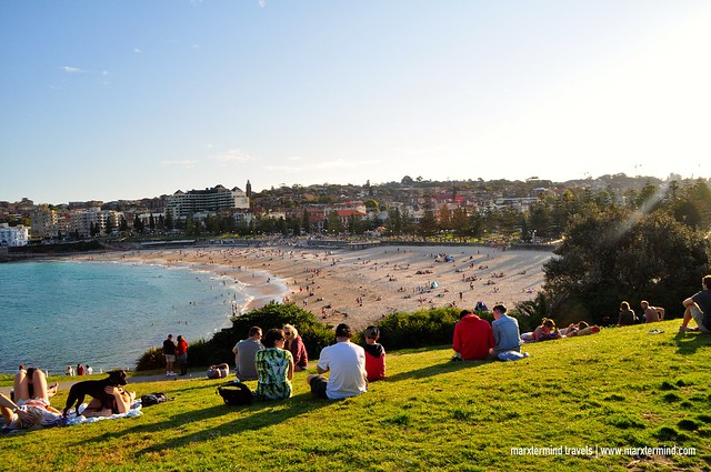 The View of Coogee Beach