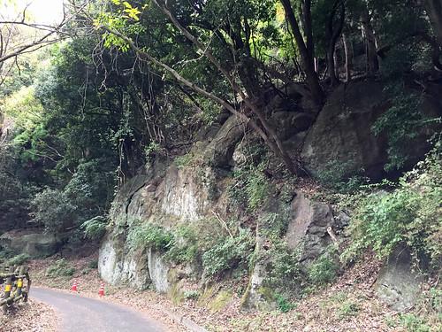 Yakushi Forest Road(Atsugi, Japan)