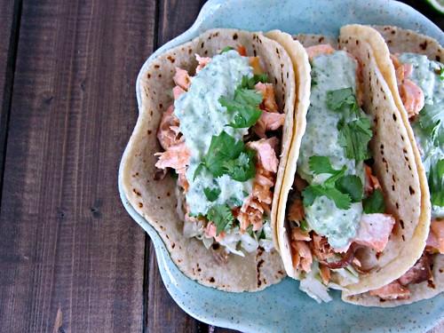 Salmon Tacos Close