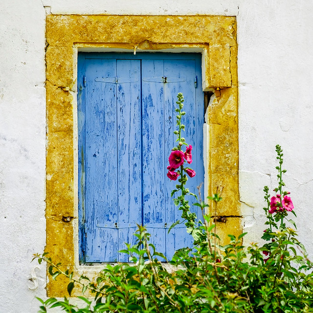 Greek Garden View