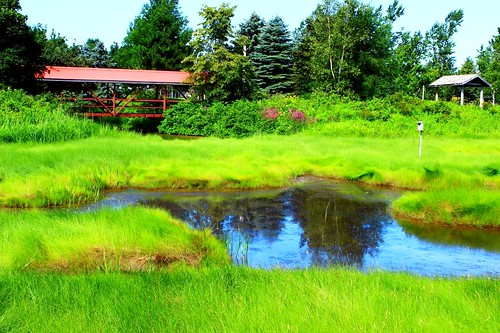 bridge blue red canada green nature water grass river landscape newbrunswick marsh