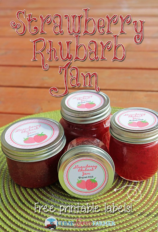 Strawberry Rhubarb Jam. A great way to enjoy the fresh taste of strawberries and rhubarb all year long! Step by step instructions available for how to make your own jam and process them in a hot water bath with adorable free printables for your regular and wide mouth mason jars.