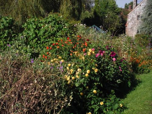 Garden Detail, Tisbury Mill (I)