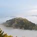 Kaiserkrone im Nebel by Sandsteiner