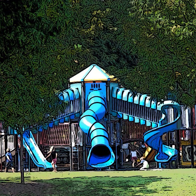 Lafortune Park Play Set
