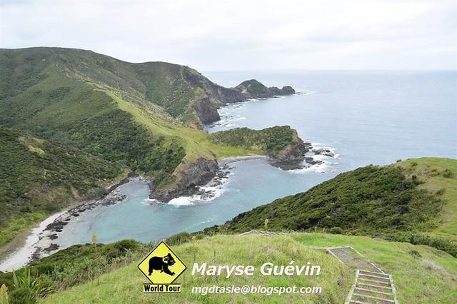 Nord et Cap Reinga Nouvelle-Zélande