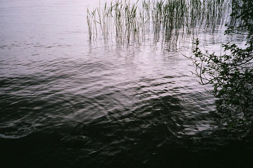 27. wood water