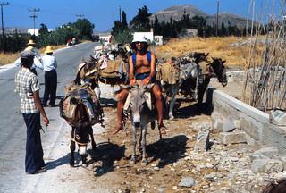 1980_paros_berj_donkeys