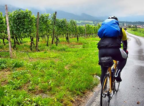 Camino de Santiago by bike.