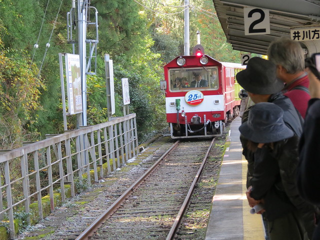 Riding the Torokko train on the Ikawa Line on the Oigawa Railway