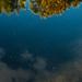 James River Reflection