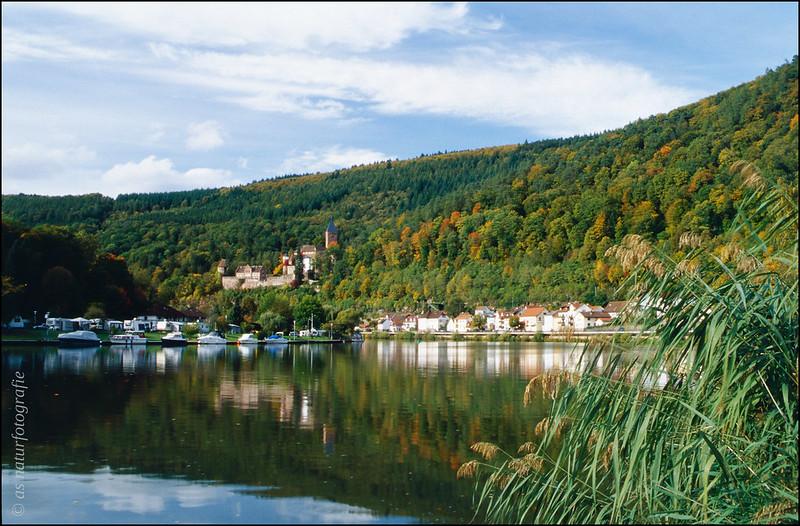 Zwingenberg im Herbst