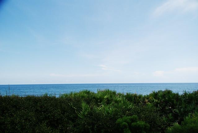 Beach skyline