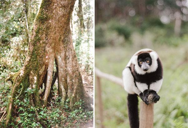 RYALE_Madagascar_Blog1_008