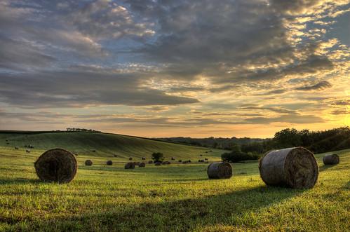 field sunrise hungary bales árnyék napkelte hedrehely bála