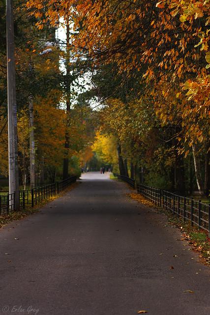 autumn_roads_02