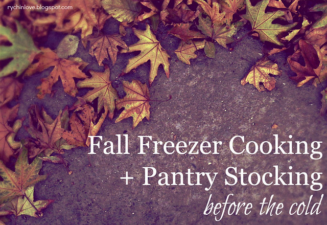 Freezer Cooking & Pantry Storage for the cold months