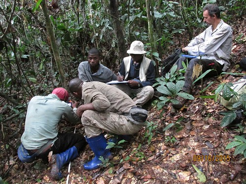 Karsten and team resetting camera trap