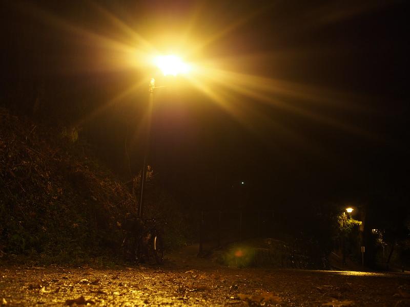 Burke-Gilman Trail at Night