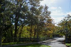 20th Avenue NE Bridge at Ravenna Park (2 of 12)