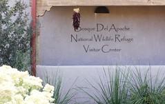 Bosque Del Apache NWR, NM