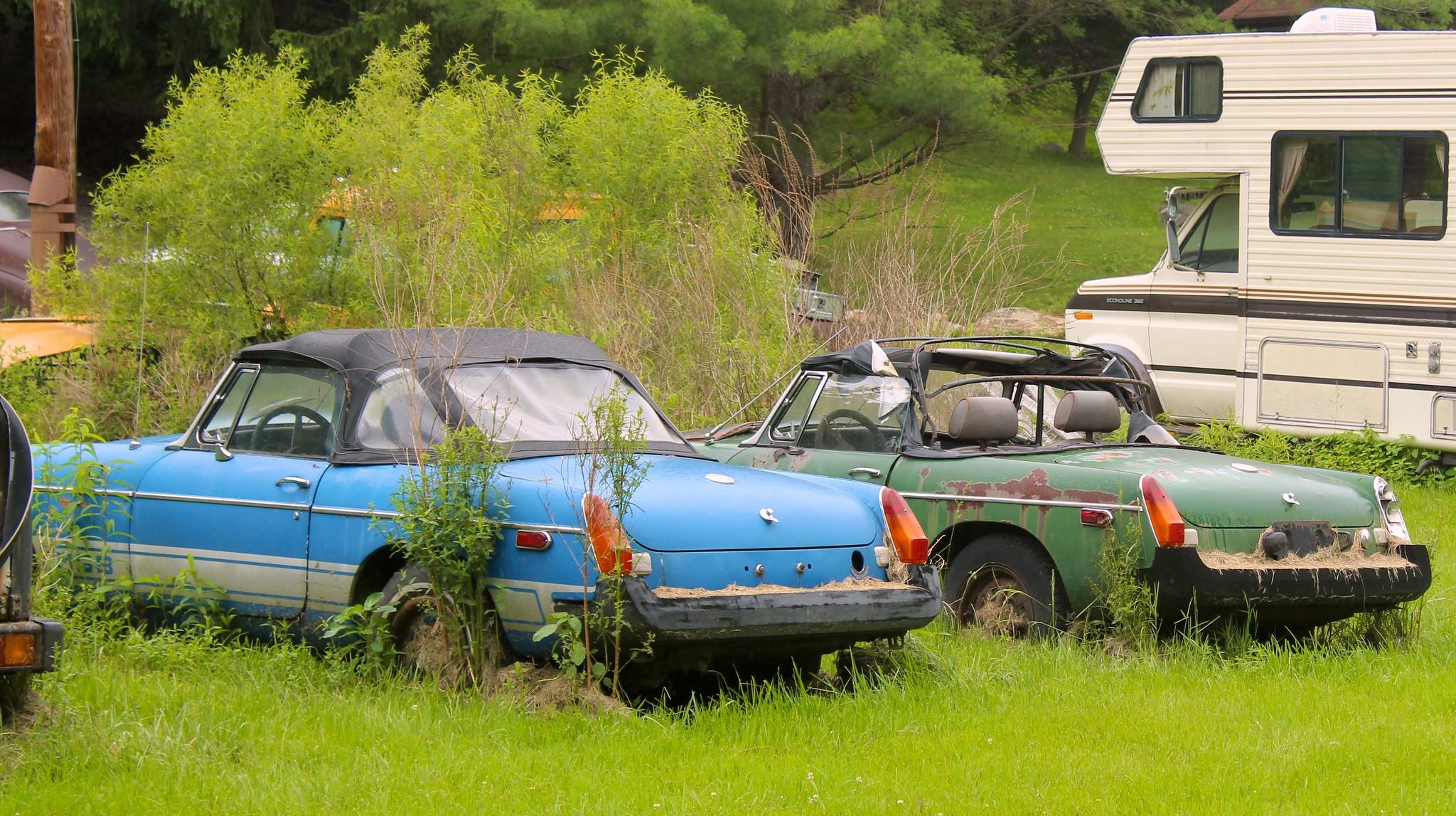 car graveyard 9