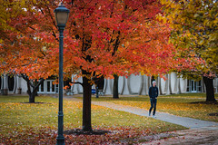 Fall at Marquette University