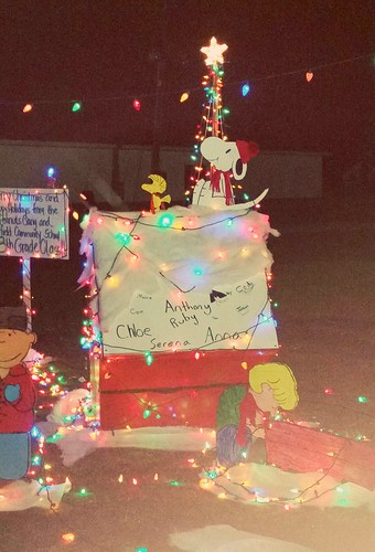 Deerfield Fair Grounds Christmas Stroll 2015 by Lapdog Creations