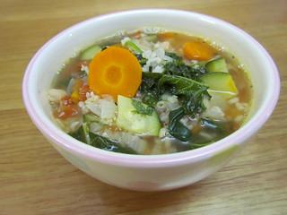 Garden Vegetable Bean Soup