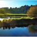 85 . Lac du Jaunay