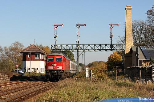 Müncheberg.24.10.08.
