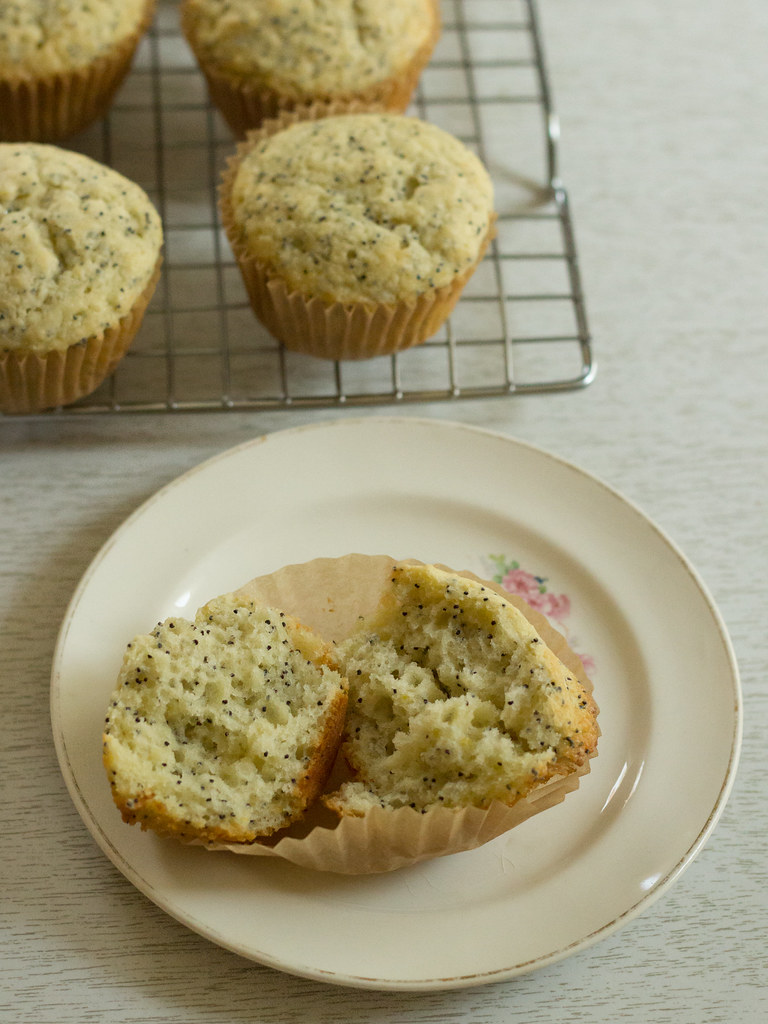 poppy seed muffin