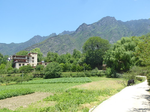 CH-Danba-Zhonglu-Village (1)