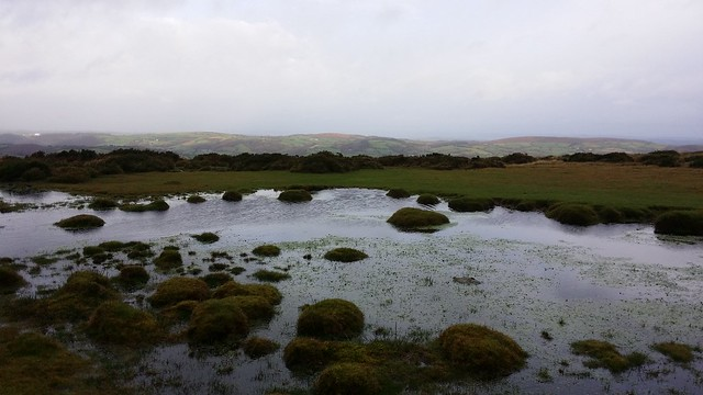 Tarn within the saddle between Easdon Hill and Tor