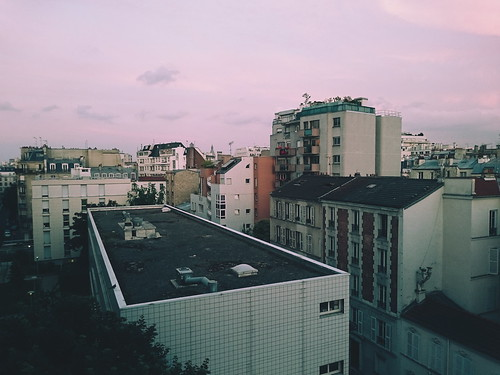 Parisian Roofs With a Pink Sky