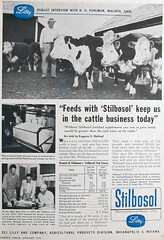 DES Stilbosol 1956 advert