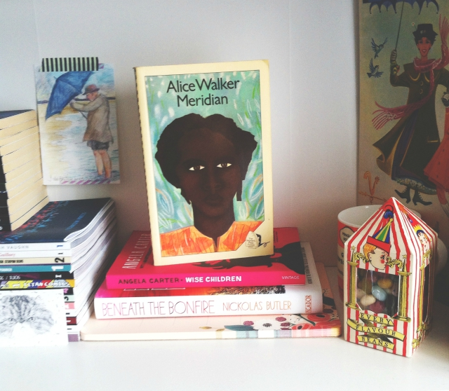 alice walker meridian book blog
