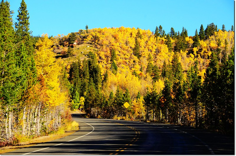 Fall colors by Peak to Peak HWY, Colorado  (7)