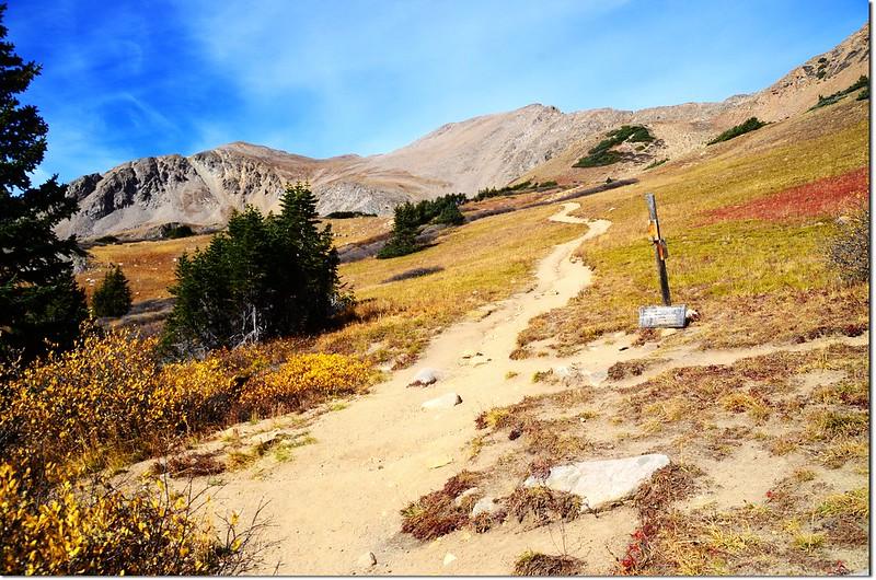 Herman Lake & Jones Pass Trail junction