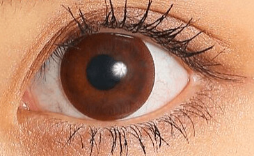 candymagic_1day_biginnerchoco_eye